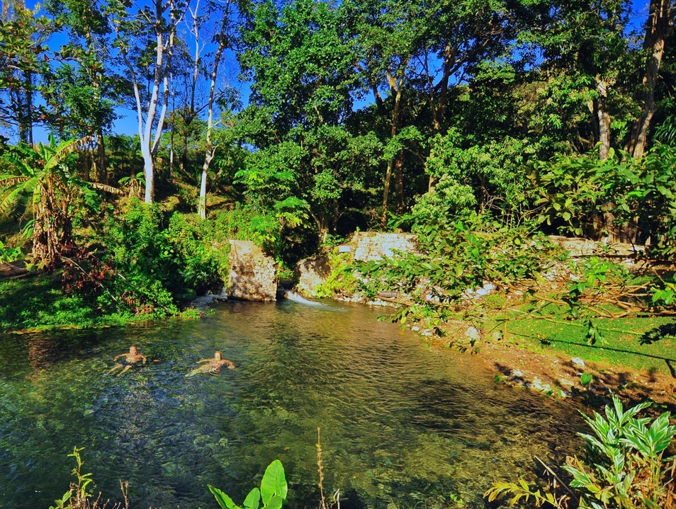 Steven's Aqua Nature Park Whithorn  Jamaica
