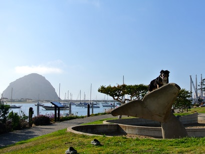 Morro Bay Morro Bay California United States