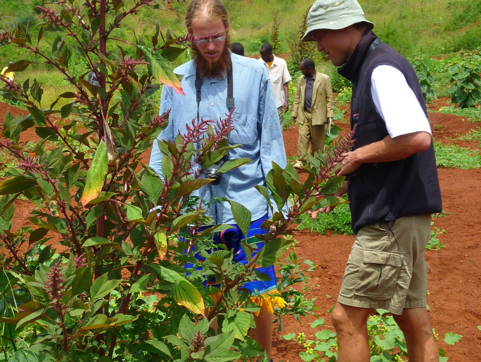 Gersale Tree Planting Experience