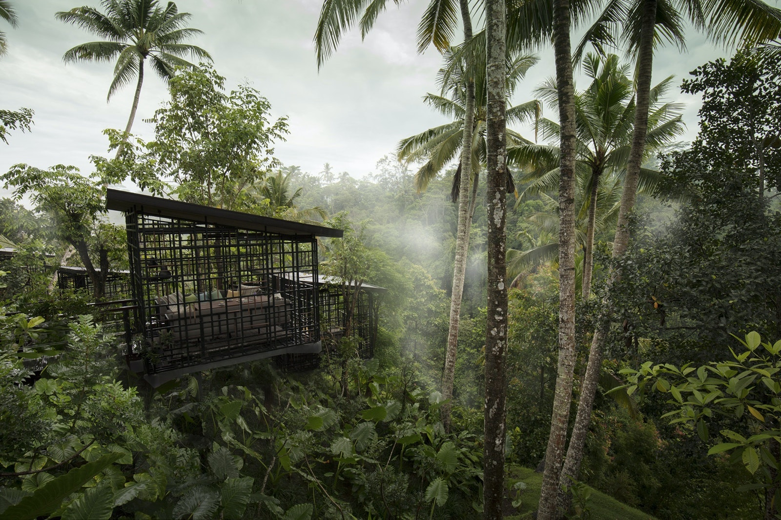18 Magical Tree House Hotels And Airbnbs To Book Now