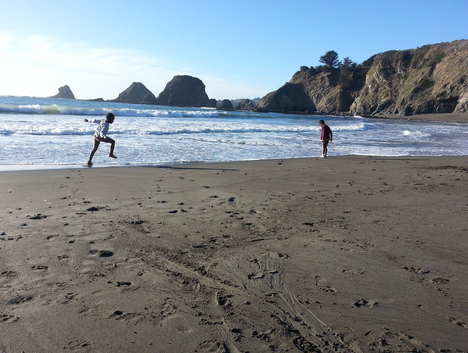 Mendocino Beaches