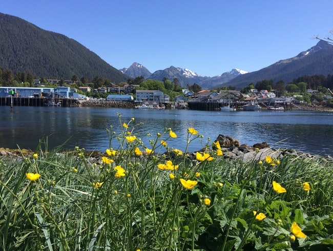 The Beauty of Sitka