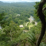 Danum Valley & Borneo Rainforest Lodge (BRL)