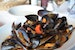 Mussel mayhem