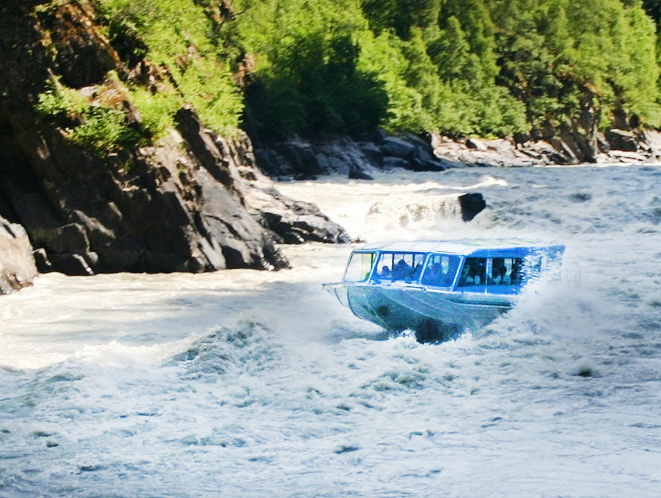 Jetboating and Floating the Talkeetna River Talkeetna Alaska United States