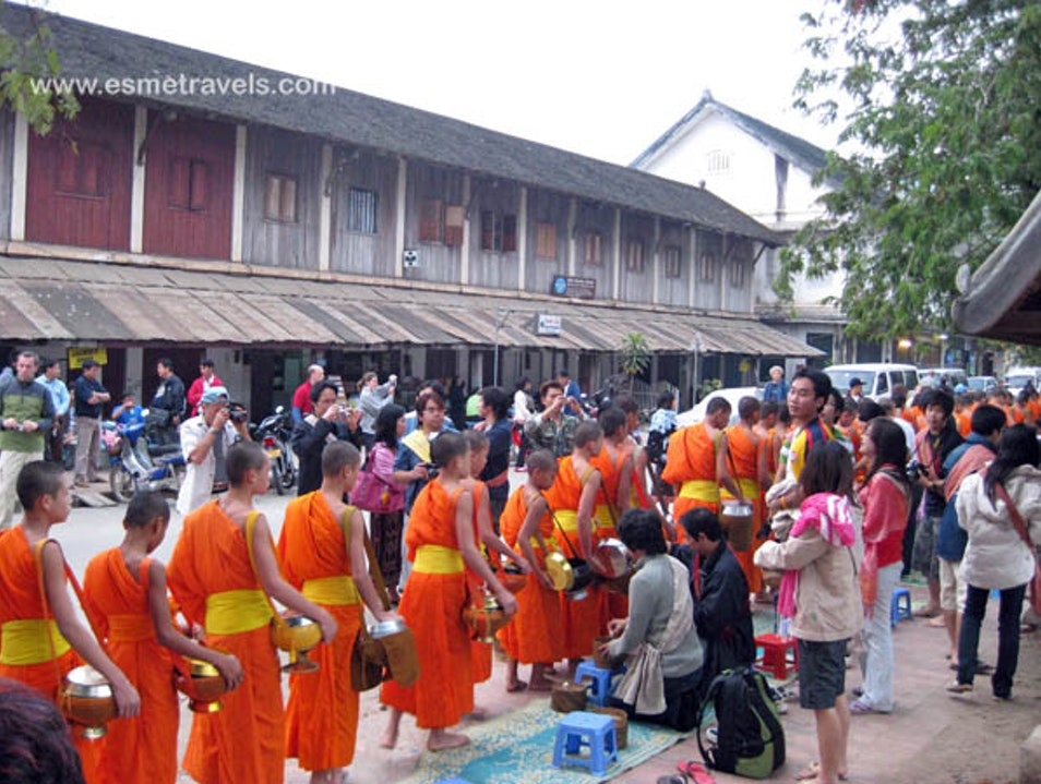 Observing the Tak Bat (Alms Giving Ceremony)