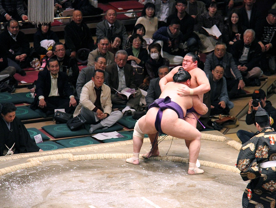 Addicted to Sumo wrestling Tokyo  Japan