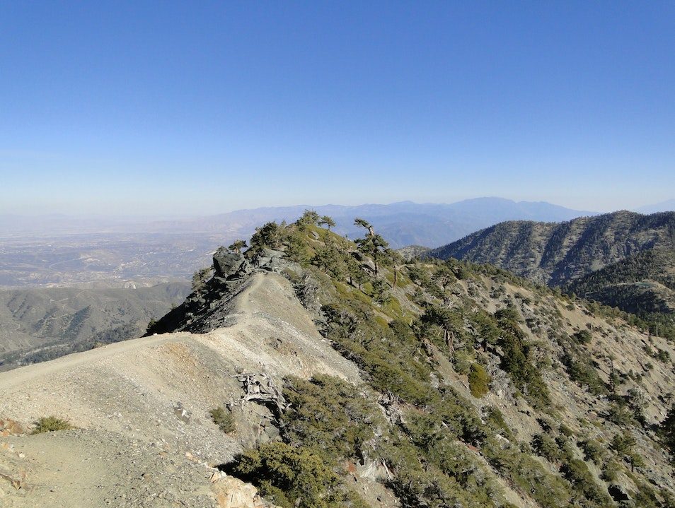 Be Brave and Bold at Mt. Baldy MT BALDY California United States