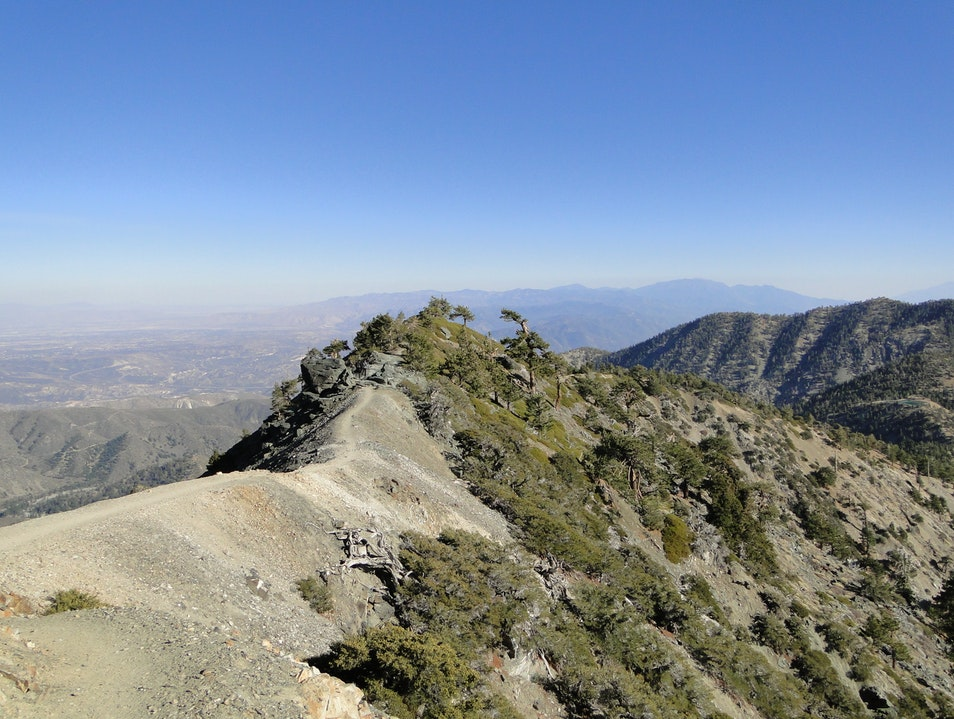 Be Brave and Bold at Mt. Baldy