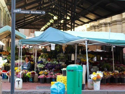 Adderley Street Flower Market Cape Town  South Africa