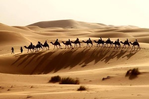 https://www.facebook.com/pages/Travel-In-Morocco/570215309728652?ref=hl