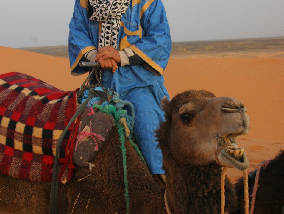 Our camel driver, Ali. Erfoud  Morocco