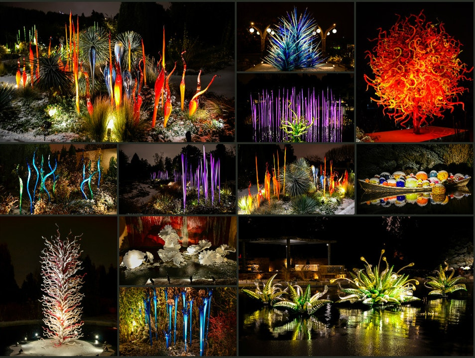 Chihuly Nights  Dacono Colorado United States