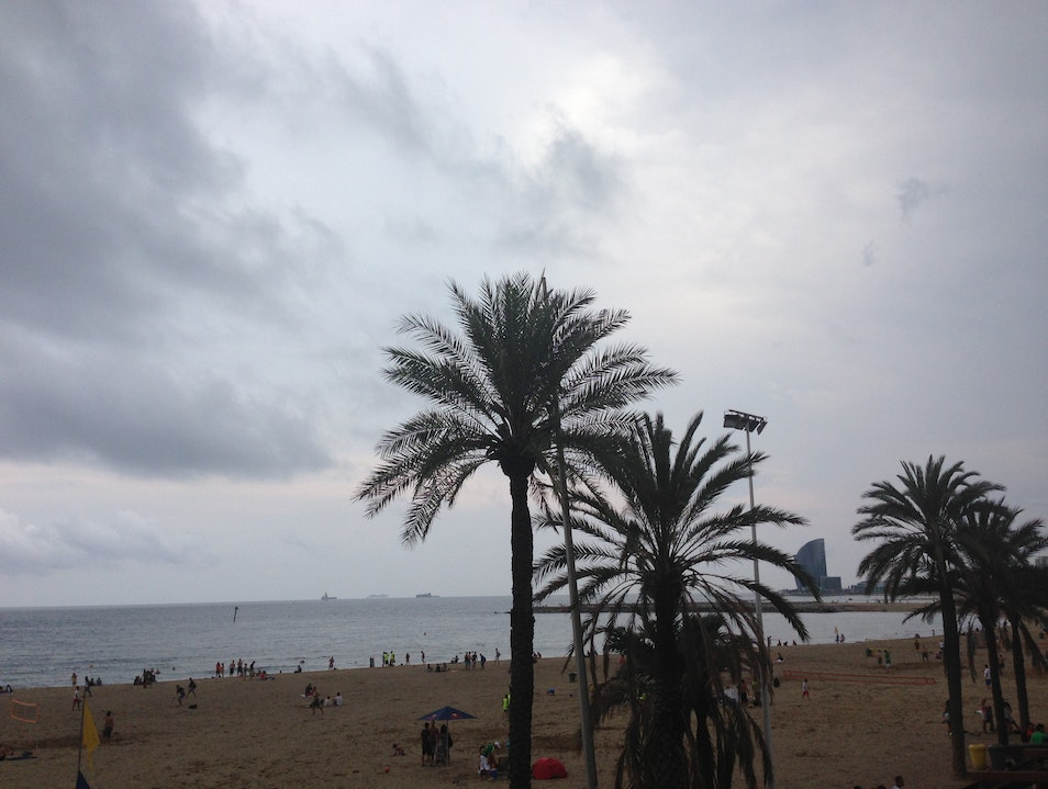 Play outdoors one of the best-known beaches in Barcelona Barcelona  Spain