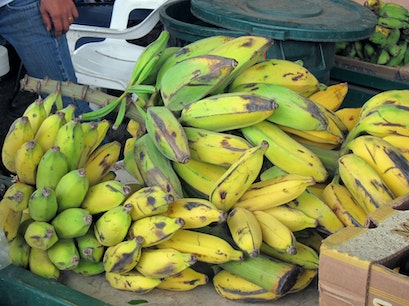 Fruit stand Lahaina Hawaii United States