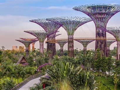 Gardens by the Bay Singapore  Singapore