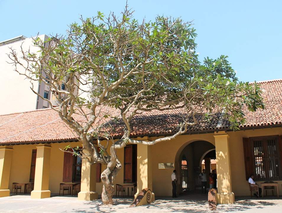 Dine at Colombo's Old Dutch Hospital