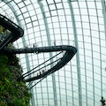 Cloud Forest Singapore  Singapore