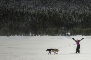 On Ice and Snow in Alberta's National Parks