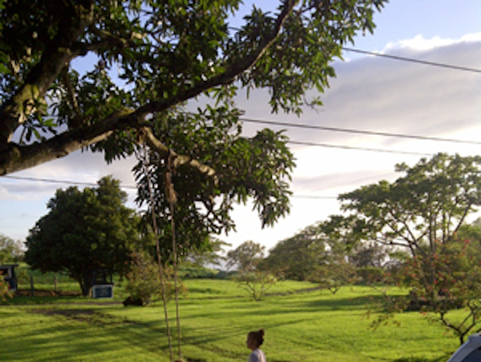 Living the Rural Life in the Mountains of Hawaii Island