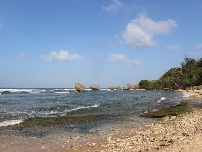 Soaking up the sun in Bathsheba, Barbados