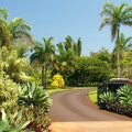 McBryde and Allerton Gardens Koloa Hawaii United States