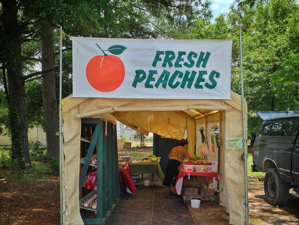 the taste of early summer Down South: peaches!