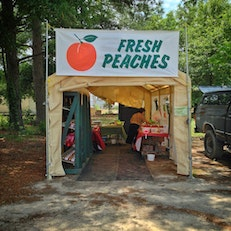 roadside stand: Fresh Peaches