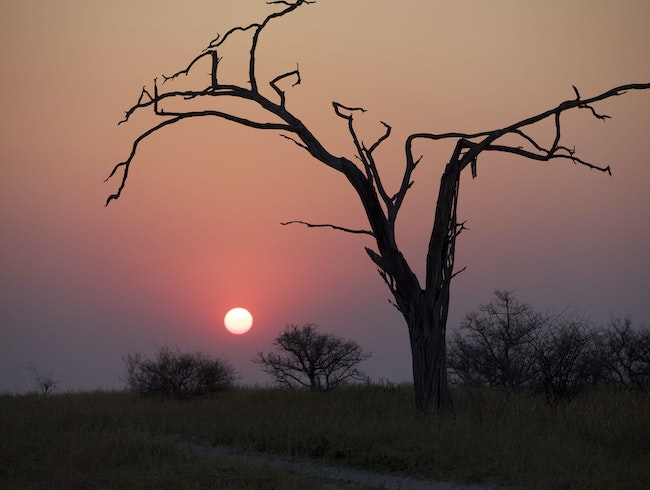 Red sunsets over the Okavango Delta