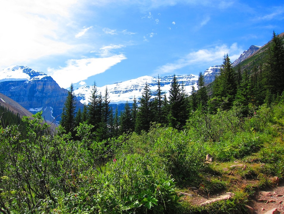 Hiking from Lake Louise Improvement District No. 9  Canada