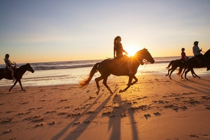 Horseback Riding on Playa Tambor