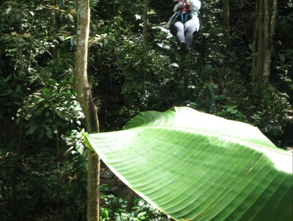 Whizzing down a zip wire in St Lucia