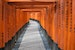 Walk Through the Fushimi Inari Orange Gates