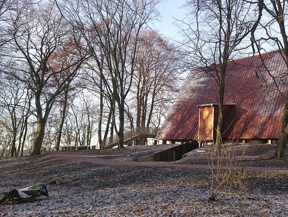 Discover Sweden's Viking Past