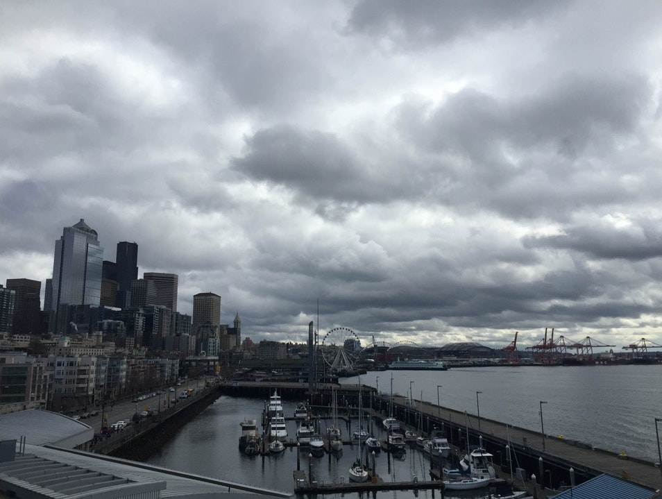 Bell Street Pier  Seattle Washington United States