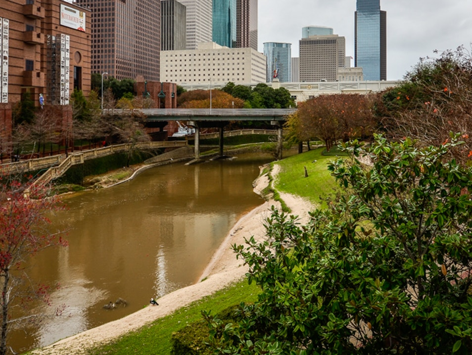 Walking by the Bayou  Houston Texas United States