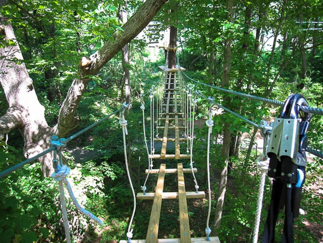 Treetop fun in Virginia Beach