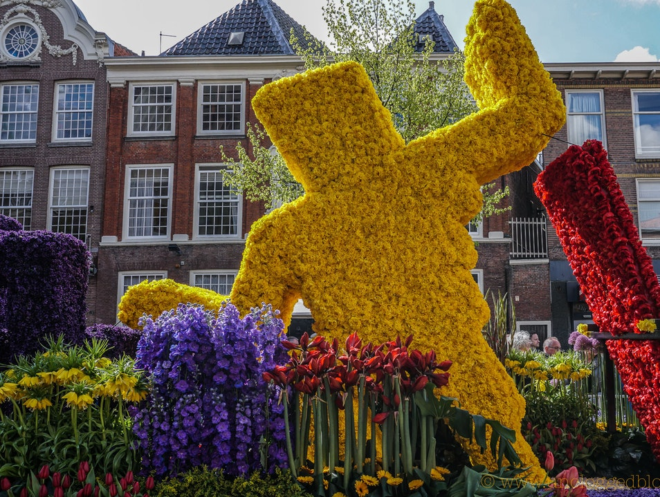 Everything's Coming Up Tulips at the Bloemencorso of the Bollenstreek