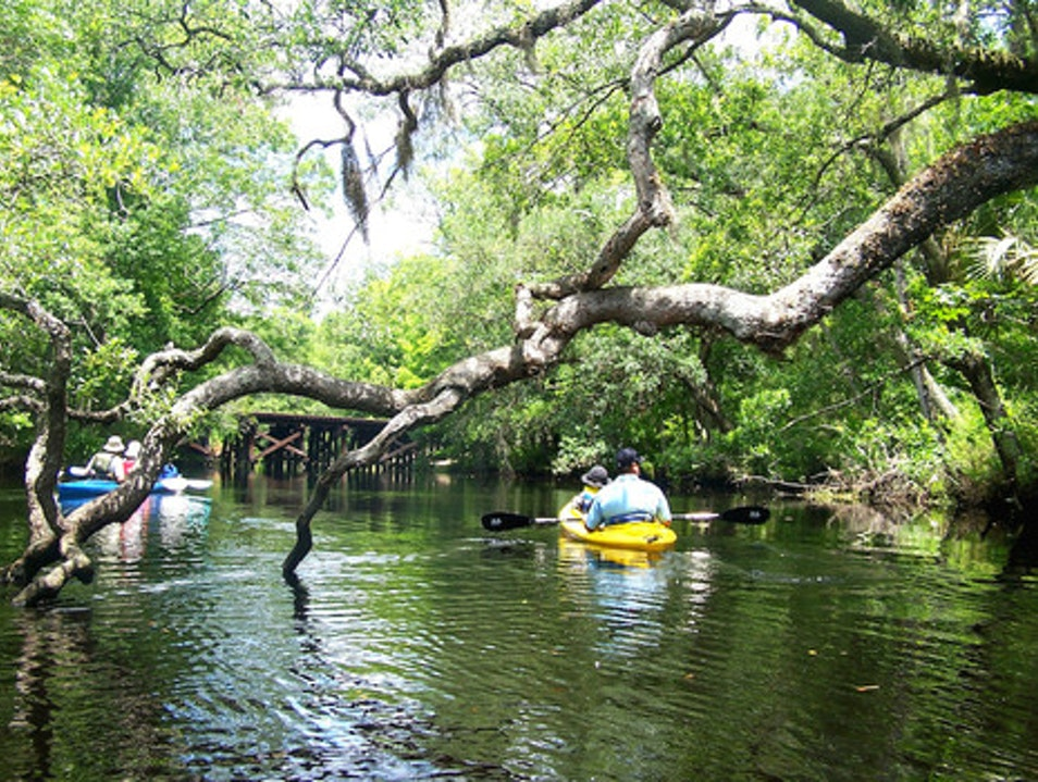 Have paddle will travel: The best way to explore North Florida  Jacksonville Florida United States