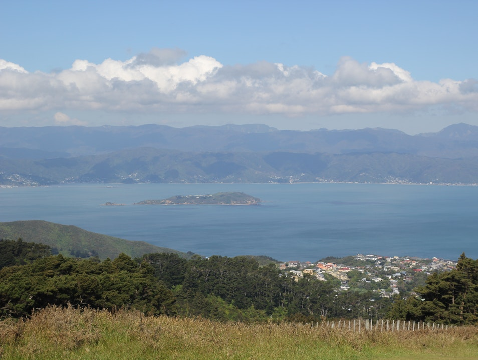 Climb Up to Mount Kaukau for the Best Views of Wellington Wellington  New Zealand