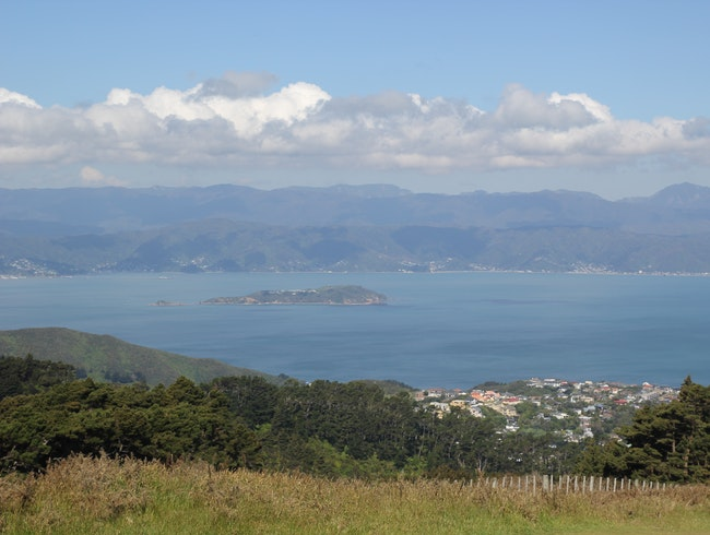 Climb Up to Mount Kaukau for the Best Views of Wellington