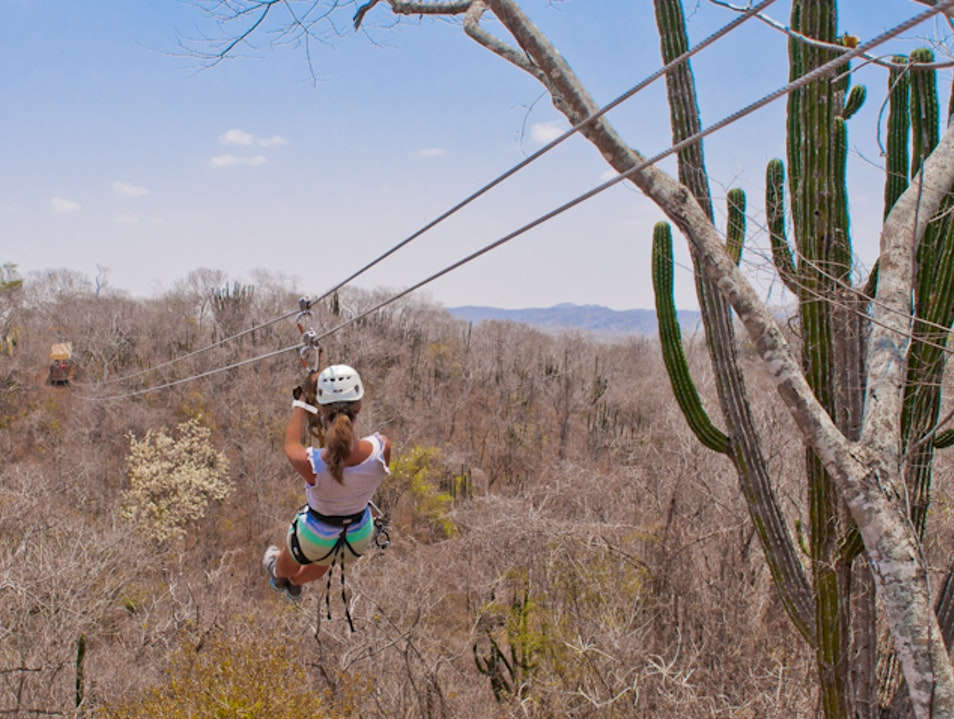 Zipline Above Fields of Agave Sinaloa  Mexico