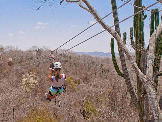 Zipline Above Fields of Agave