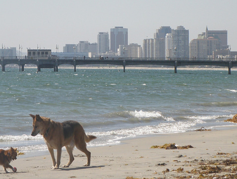 Rosie's Dog Beach Long Beach California United States