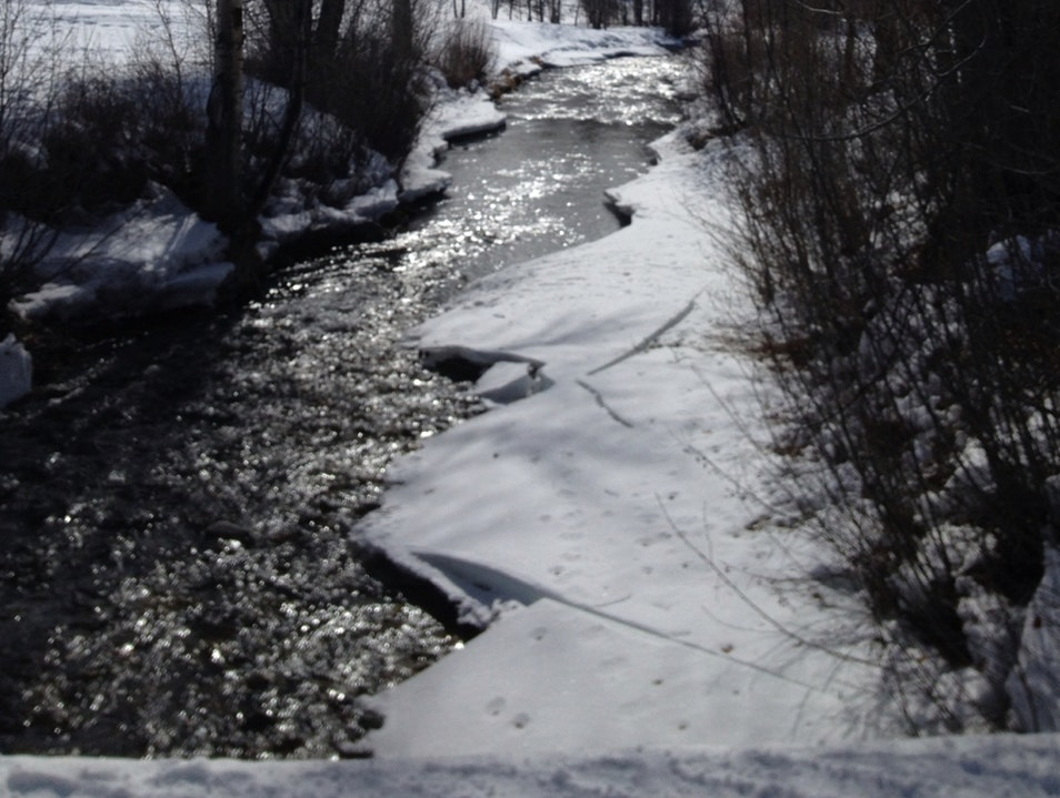 Over The River And Through The Woods Sun Valley Idaho United States