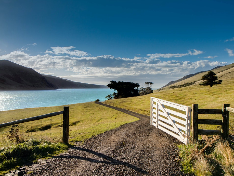 Annandale   New Zealand