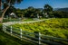 A Perfect Afternoon Carmel California United States