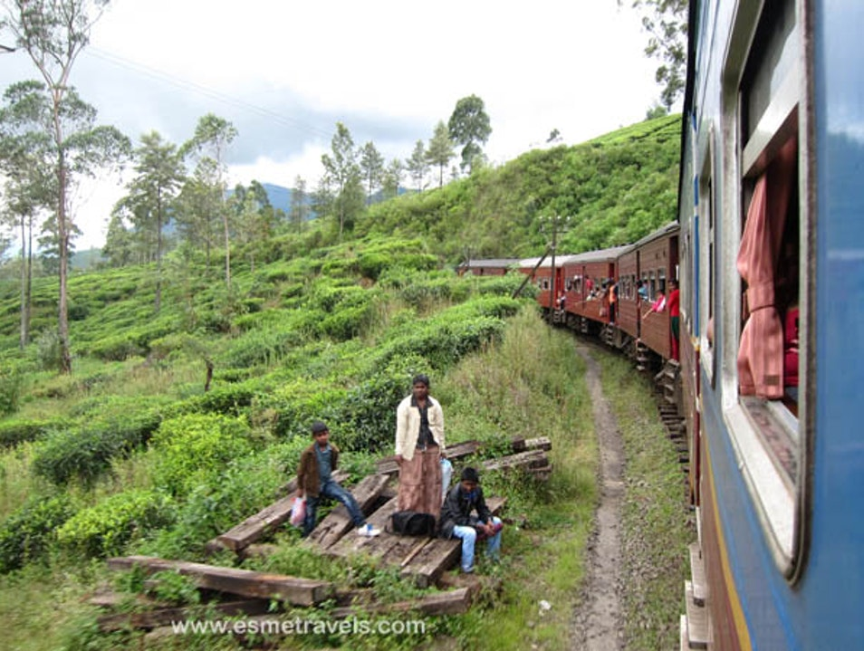 Hapatule to Horton by Train Haputale  Sri Lanka