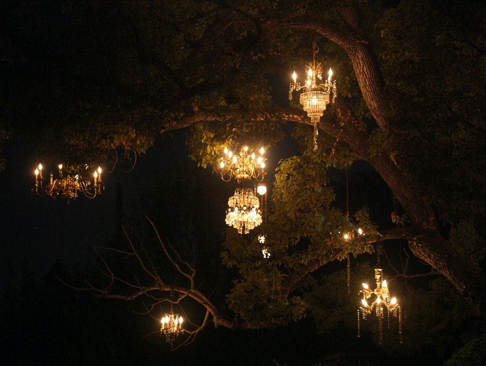 The Chandelier Tree of Silver Lake Los Angeles California United States