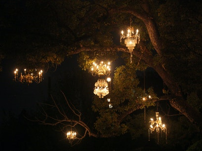 The Chandelier Tree Los Angeles California United States